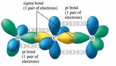 Carbon Electron Orbital Diagram
