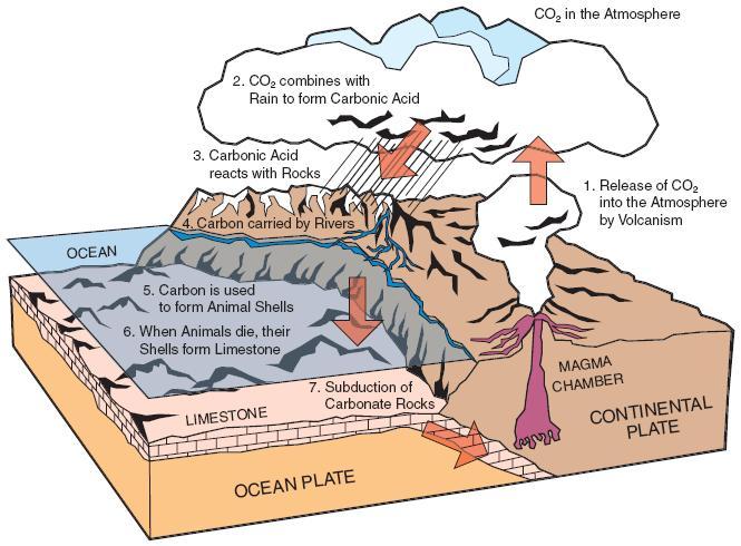 The Geological Carbon Cyclebutane.chem.uiuc.edu